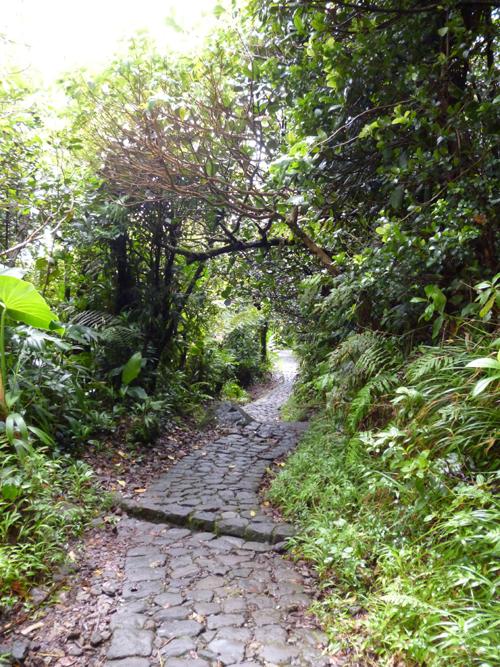 Sentier de la Souffrière
